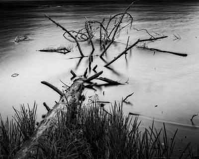 Photograph - Drowning by Alan Raasch