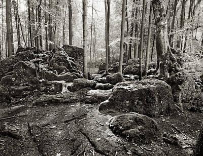 Photograph - Druidenhain by James Clancy