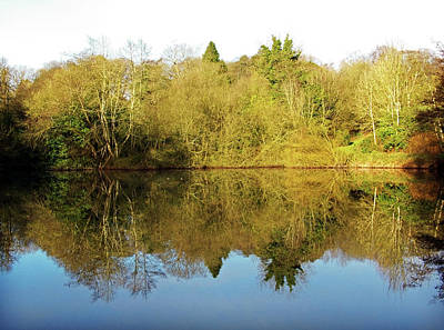 Photograph - Drum Manor Forest Park Reflections by Colin Clarke