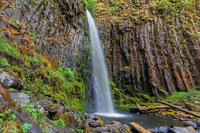 Stream Photograph - Dry Creek Falls by David Gn