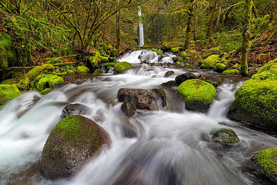 Scenic Photograph - Dry Creek Falls In Spring by David Gn