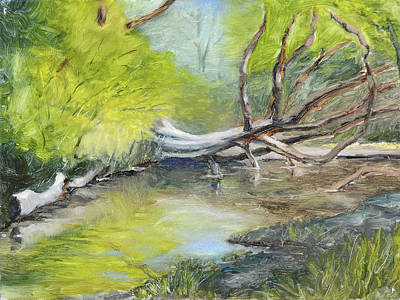 Painting - Dry Creek In Miners Ravine by Mike Patterson