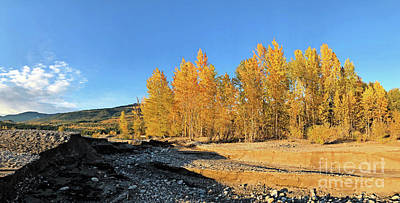 Photograph - Dry Creekbed by Victor K