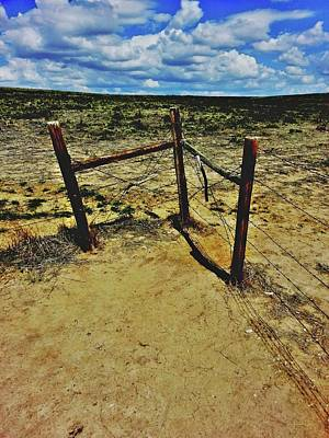 Photograph - Dry Desert Fenceline by Amanda Smith