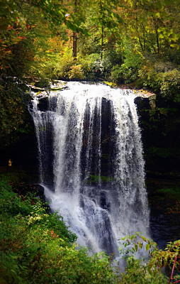 Photograph - Dry Falls In The Nantahala National Forest by Carla Parris