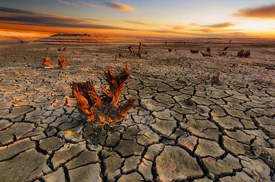 Dry Lake Print by Piotr Krol (bax)