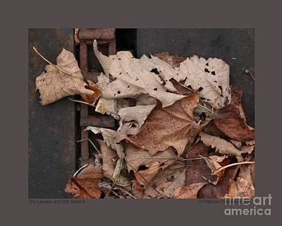 Photograph - Dry Leaves And Old Steel-ii by Patricia Overmoyer
