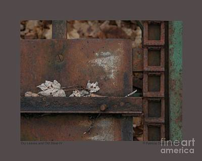 Photograph - Dry Leaves And Old Steel-iv by Patricia Overmoyer