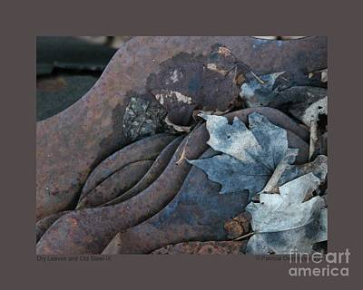Photograph - Dry Leaves And Old Steel-ix by Patricia Overmoyer