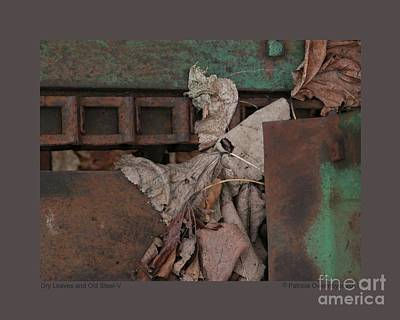 Photograph - Dry Leaves And Old Steel-v by Patricia Overmoyer