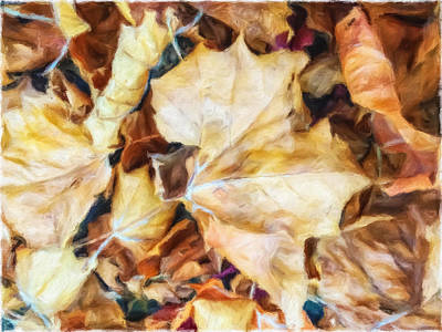 Photograph - Dry Leaves by Jonathan Nguyen