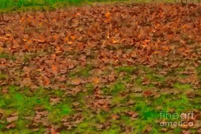 Photograph - Dry Leaves On Grass by Ashish Agarwal