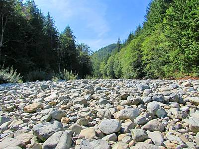 Nature Photograph - Dry Riverbed by Julie Pacheco-Toye