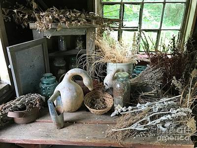 Photograph - Drying Herbs And Flowers by Ruth H Curtis