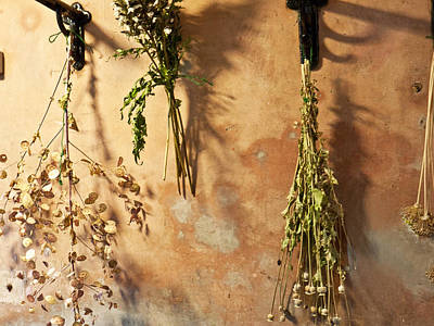 Photograph - Drying The Herbs by Wendy Le Ber