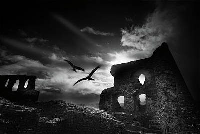 Photograph - Dryslwyn Castle 3b by Phil Fitzsimmons