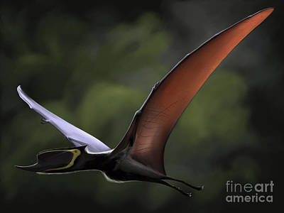 One Animal Digital Art - Dsungaripterus With Wings Spread by Michele Dessi