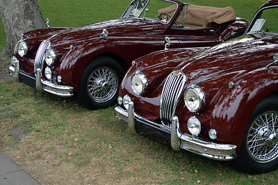 Photograph - Dual Jaguar 140s by Bill Dutting