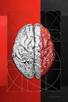 Dualities - Half-silver Human Brain On Red And Black Canvas Original by Serge Averbukh