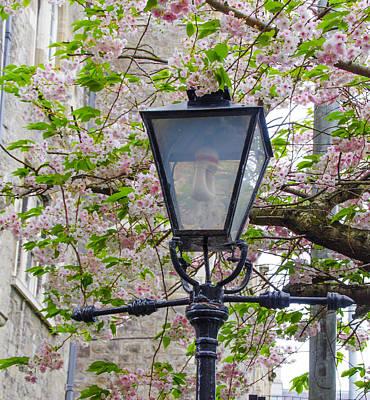 Street Lamps Digital Art - Dublin Street Lamp In Spring by Bill Cannon