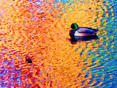 Photograph - Duck A L'orange by David Coblitz