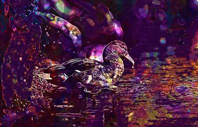 Digital Art - Duck Bird Nature Wildlife Lake  by PixBreak Art
