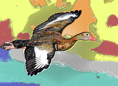 Wood Duck Mixed Media - Duck by Charles Shoup