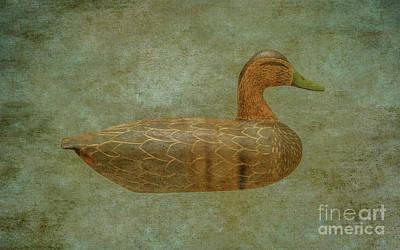 Game Bird Digital Art - Duck Decoy Number Three by Randy Steele