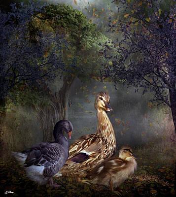 Duck Duck Goose Art Print