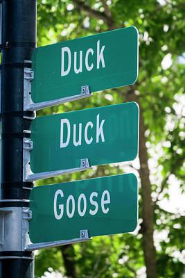 Photograph - Duck Duck Goose by Steven Ralser