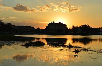 Photograph - Duck In The Sunset by rd Erickson