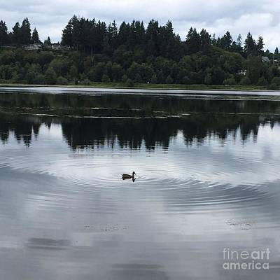 Photograph - Duck In Water by LeLa Becker