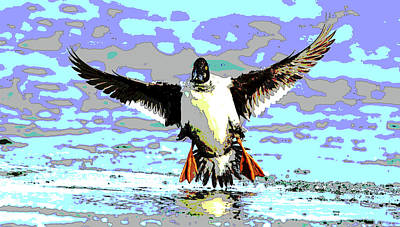Wood Duck Mixed Media - Duck Landing by Charles Shoup