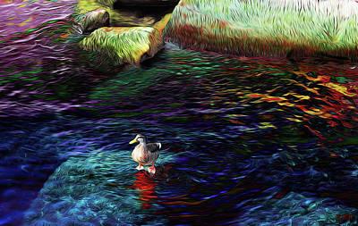 Photograph - Duck On Rock by David Pantuso
