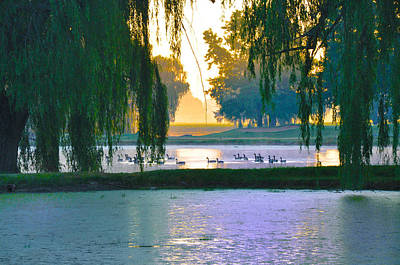 Duck Pond At Dawn Art Print by Bill Cannon