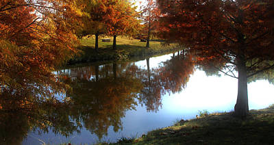 Duck Pond In The Fall Art Print by Rebecca Lynn Roby