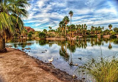 Photograph - Duck Pond  by Joseph Caban