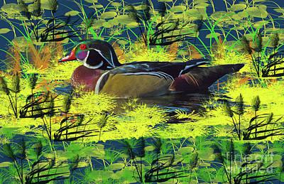 Photograph - Duck Pond by Scott Hervieux