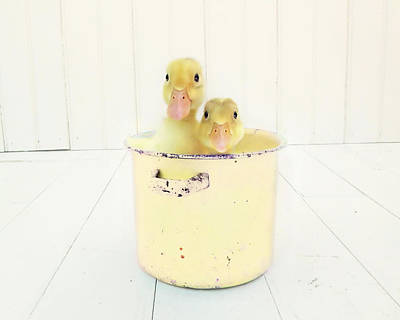 Ducklings Photograph - Duck Soup - Yellow Version by Amy Tyler