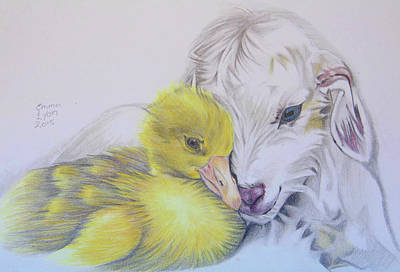 Drawing - Duckling And Kid by Emma Lyon