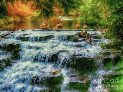 Photograph - Ducks And Geese By The Waterfall by Leigh Kemp