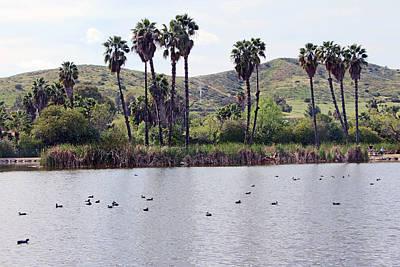 Thomas Kinkade Royalty Free Images - Ducks at the Lake Royalty-Free Image by Munir Alawi