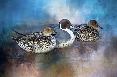 Photograph - Ducks In A Row by Marilyn Wilson