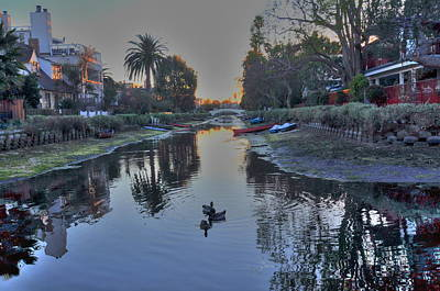 Photograph - Ducks In Canal by Richard Omura