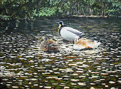 Painting - Ducks In France by Lawrence Holofcener