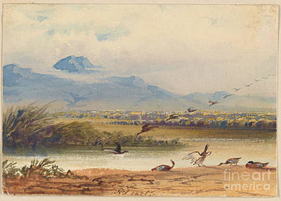 Newton Painting - Ducks Landing On A River  by MotionAge Designs