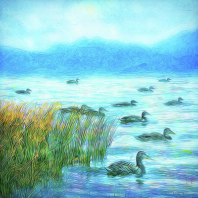 Digital Art - Ducks On Misty Morn - Lake In Boulder County Colorado by Joel Bruce Wallach