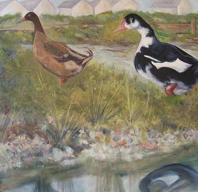 Ducks On Widewater Lagoon Original by Susan Heather