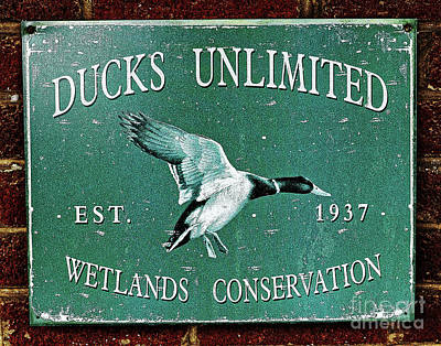 Photograph - Ducks Unlimited Vintage Sign by Paul Mashburn