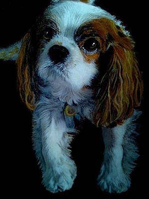 Mixed Media - Dudley by Mandy Thomas